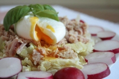 Low-Fodmap-Poached-egg-tuna-and-radish-salad
