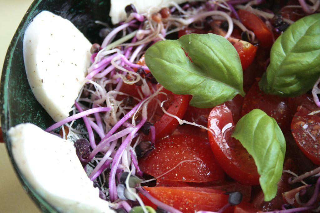 Tomato, radish sprouts and mozarella salad